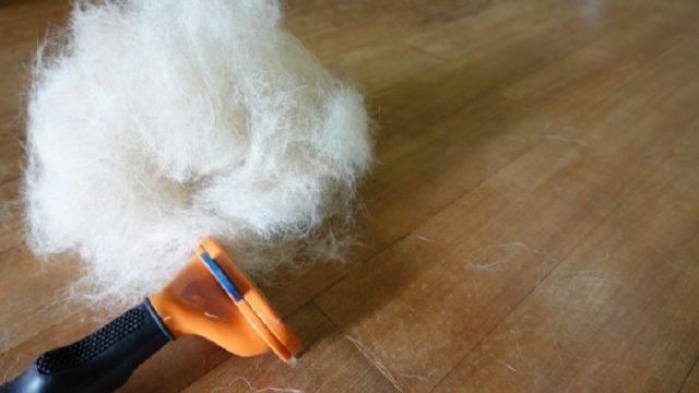 ファーミネーターとファーミネーターで取れた毛