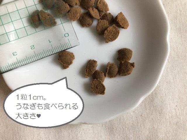 馬肉自然づくりの粒の大きさ。1粒1cm